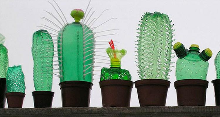 Cactus feitos com garrafas pet