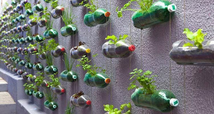 Jardim vertical feito com garrafas pet
