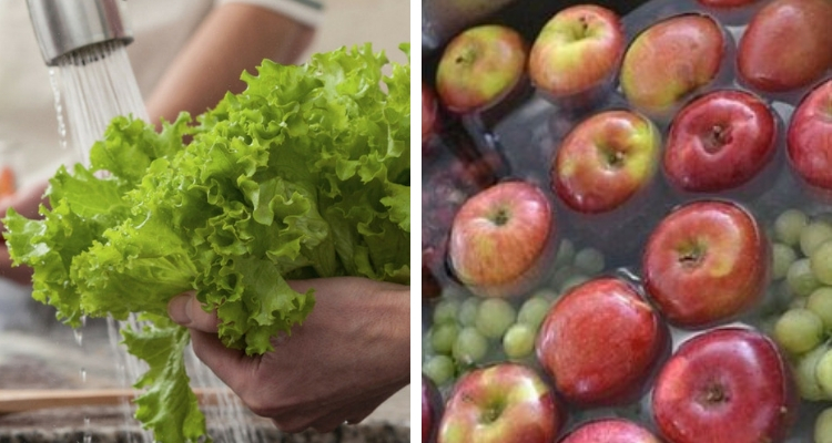 lavando frutas e salada com água sanitária