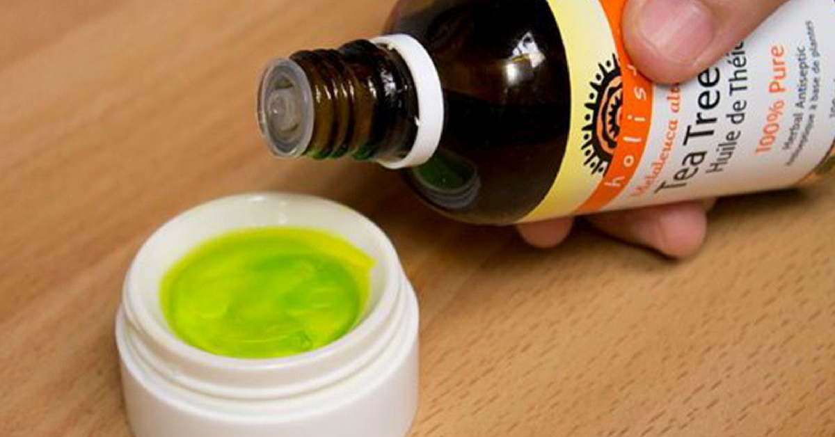 diluir óleo de melaleuca