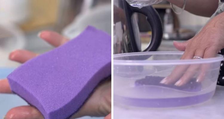 Esponjas higienizá-las