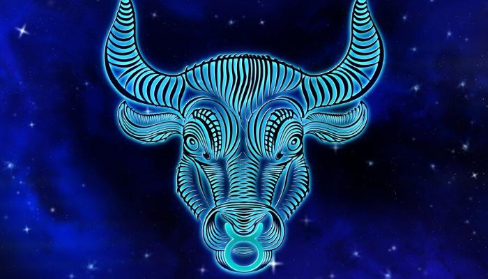 defeitos do signo de touro