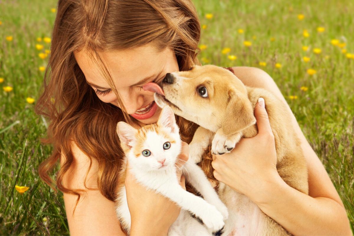 Capa razões para ter um animal de estimação